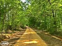 Gastonburg Black Belt Hunting Pond : Gastonburg : Wilcox County : Alabama