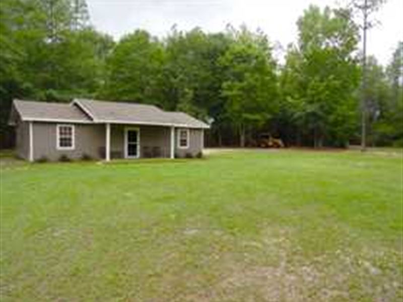 House And 10 Acres In Telfair : Helena : Telfair County : Georgia