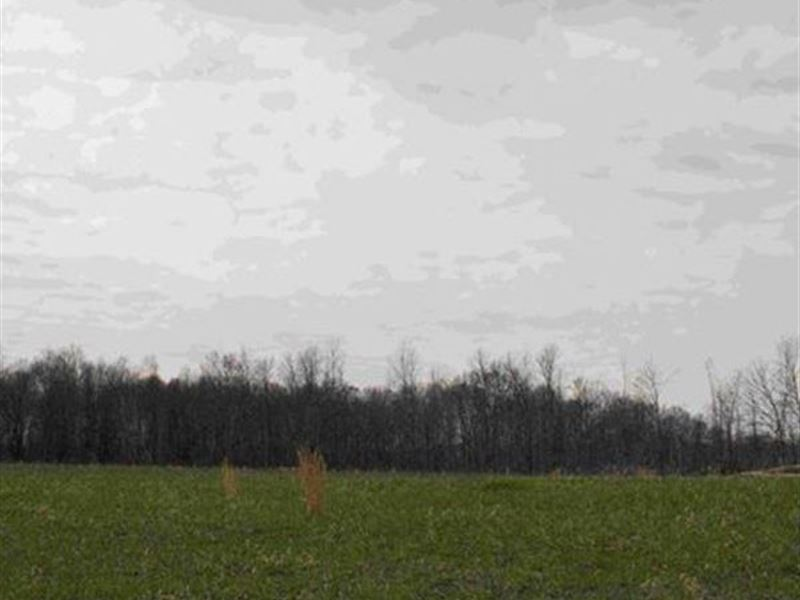 Sr 700 - 137 Acres : Winham : Portage County : Ohio