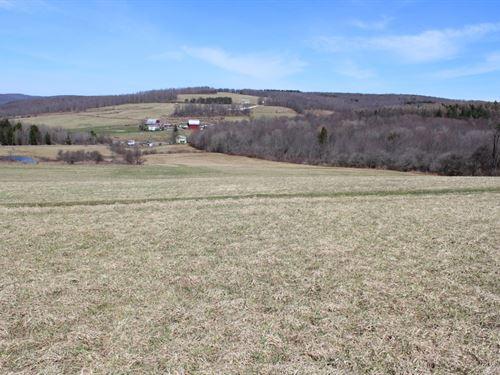 82 Acres Farmland Ithaca Ny Organic : Caroline : Tompkins County : New York