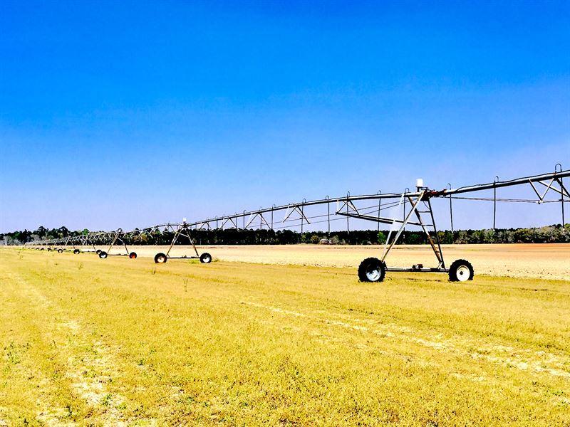 Rare Farmland & Timberland For Sale : Climax : Decatur County : Georgia