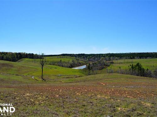 Bunkum Creek Farm And Homesite Prop : Nauvoo : Winston County : Alabama