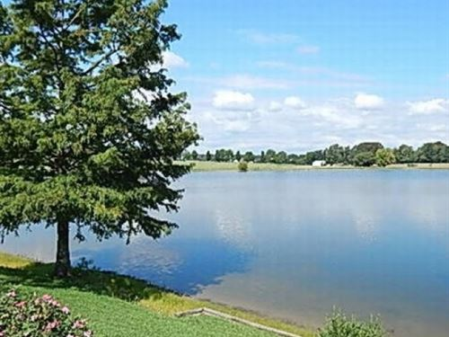 40 Acres W/ Custom Home In Madison : Flora : Madison County : Mississippi