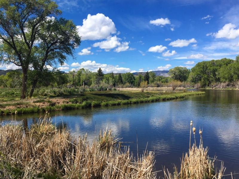 9181120 Magical Mountain Property : South Fork : Rio Grande County : Colorado