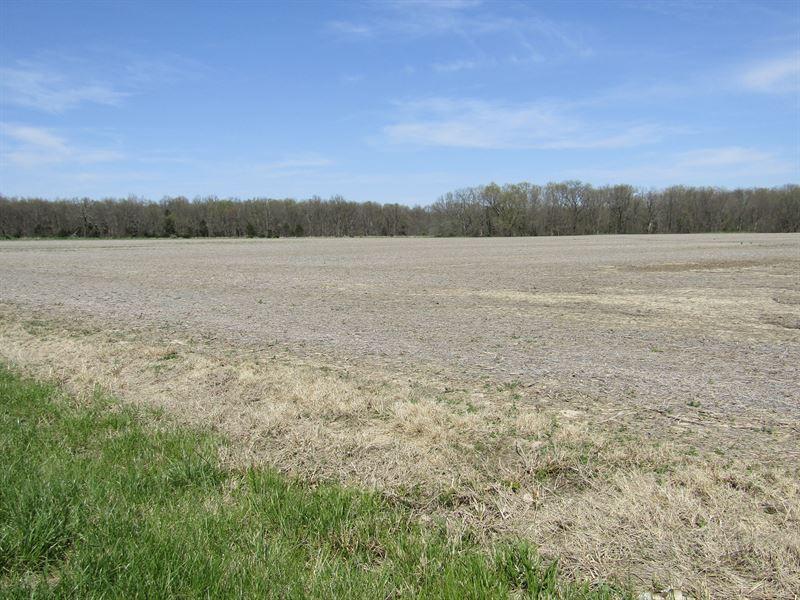 62 Acres Absolute Land Auction : Dix : Jefferson County : Illinois