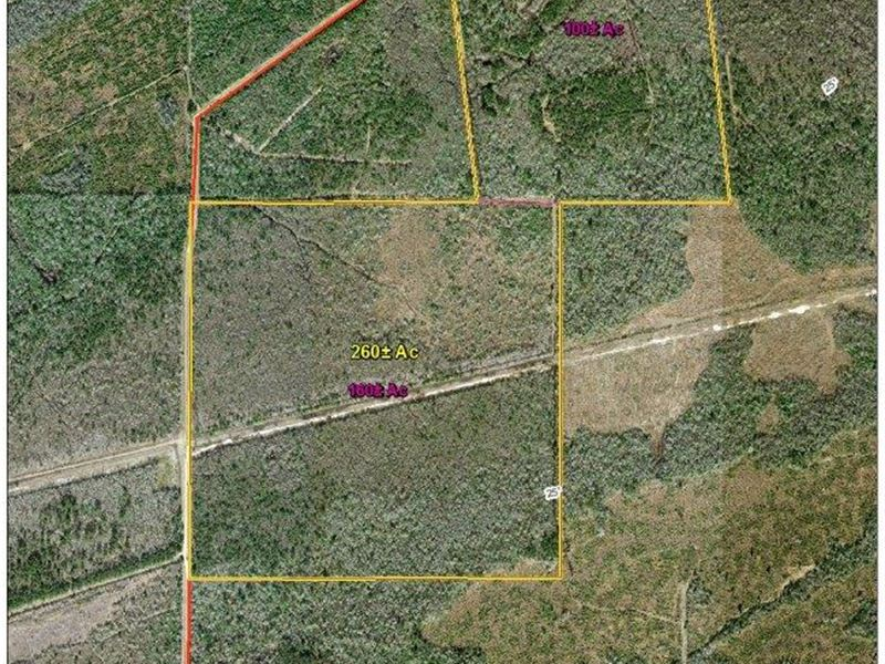 100 Acres Off Of Linscomb Road : Mauriceville : Orange County : Texas