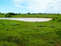 320 Acres With Creek And Ponds : Billings : Garfield County : Oklahoma