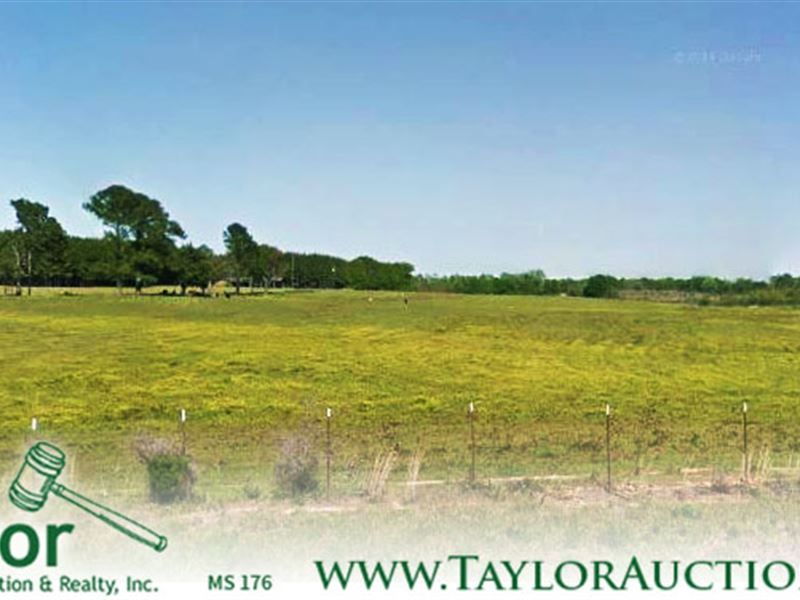 320 Acres Of Pasture & Timberland : Decatur : Newton County : Mississippi