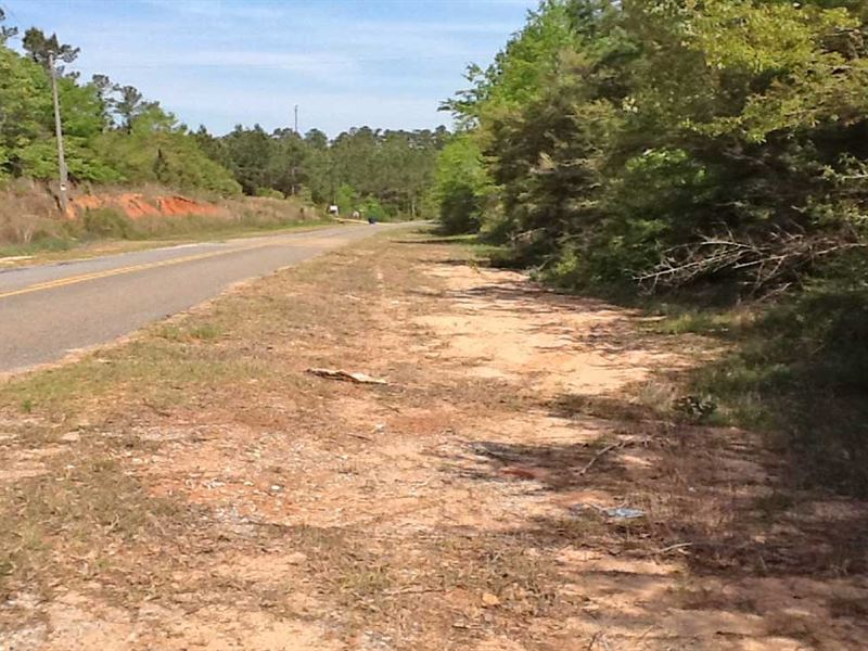 Morgan Mill Rd Tract : Brantley : Crenshaw County : Alabama
