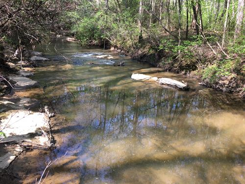 Little Black Creek Retreat On 40 Ac : Odenville : Saint Clair County : Alabama