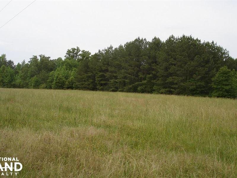 Akron Mini-Farm 80 Acres : Akron : Hale County : Alabama
