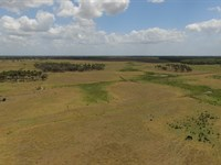 500+/- Acre Ranch For Sale : Okeechobee : Okeechobee County : Florida