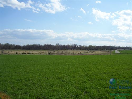 Hunting Property With Build Site : Portage : Columbia County : Wisconsin