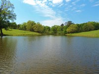 3 Acre Pond, Pasture & Timber : Greensboro : Greene County : Georgia