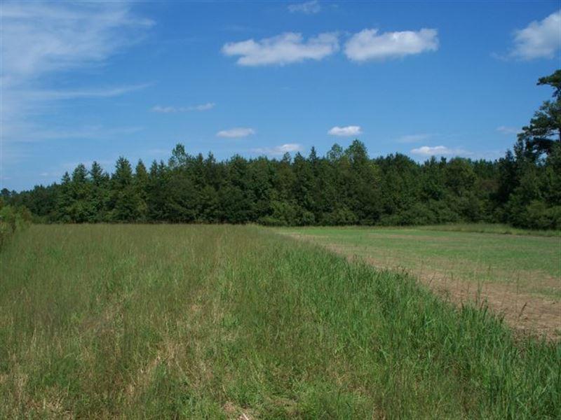 Peace & Tranquility : Kelly : Bladen County : North Carolina