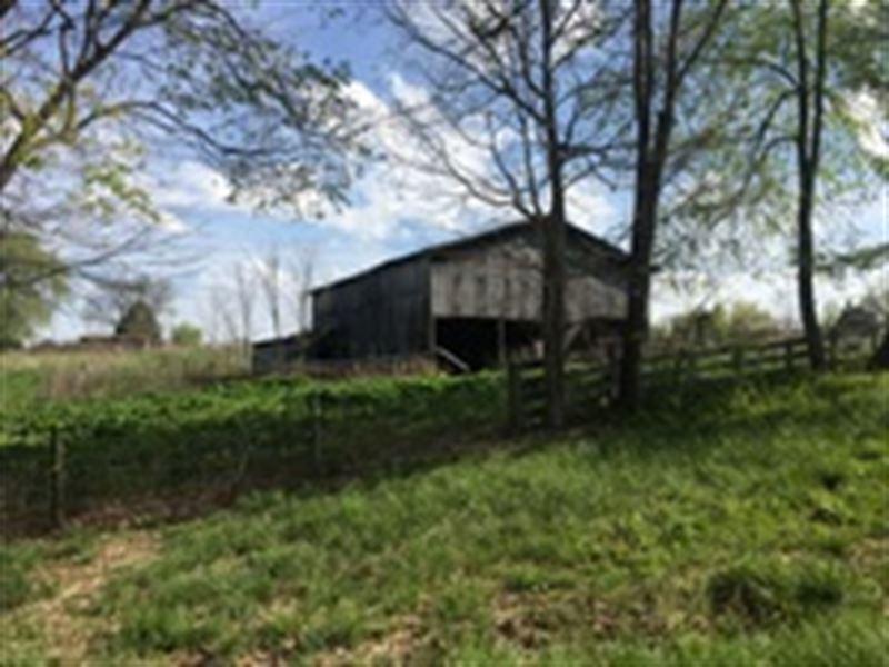 51 Acres In Metcalfe County, Ky : Edmonton : Metcalfe County : Kentucky