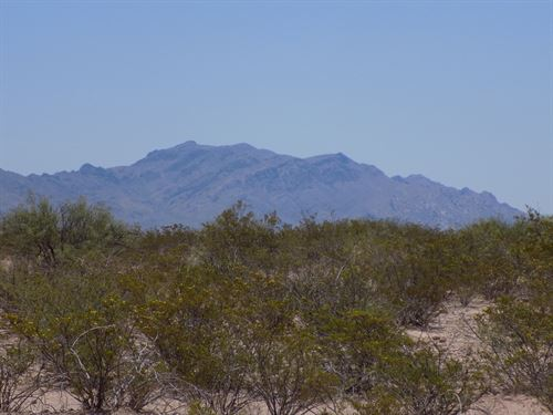 20.01 Acres In Fort Hancock, TX : Fort Hancock : Hudspeth County : Texas