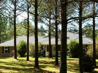 Home For You & The Chickens : Lafayette : Chambers County : Alabama
