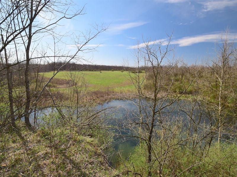 Bailey Long Rd - 70 Acres : Bethesda : Belmont County : Ohio