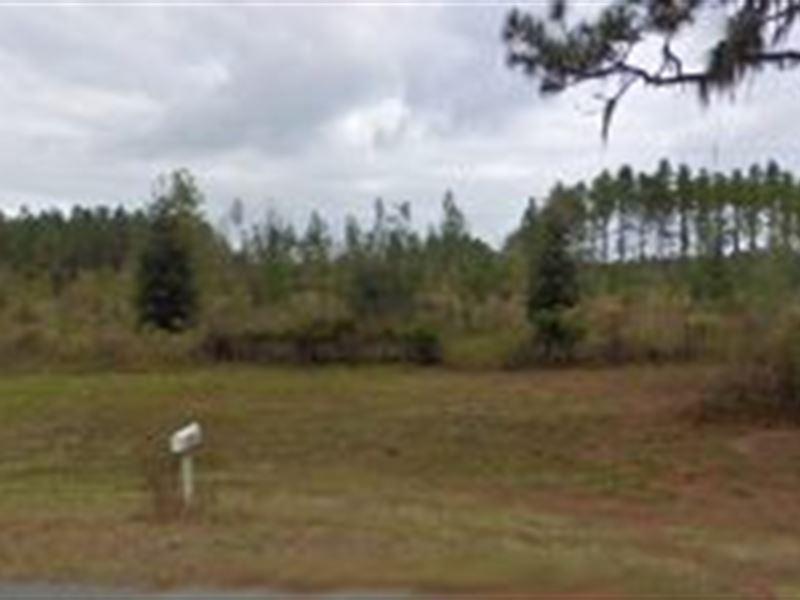 Hamilton County, Florida $230,000 : Jennings : Hamilton County : Florida