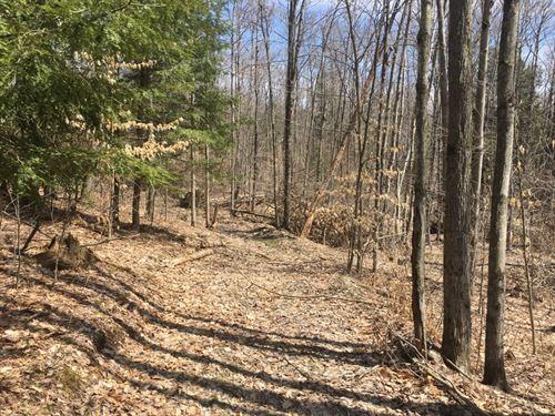 10 Acre Lot Near Binghamton Ny : Windsor : Broome County : New York