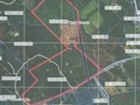 Prime Hunting Acres For Lease : Haddock : Jones County : Georgia