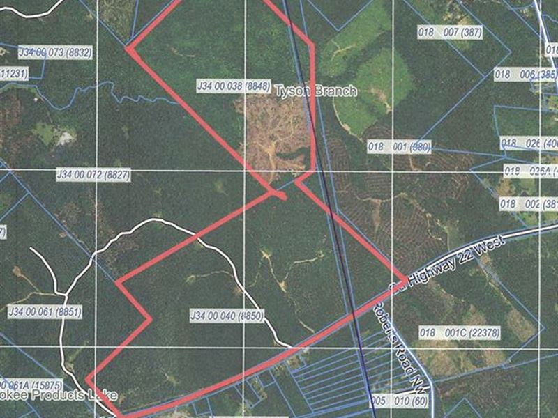 Prime Hunting Acres For Lease : Haddock : Jones County : Georgia