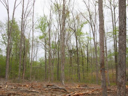 11 Acre Lot : Columbia : Cumberland County : Virginia