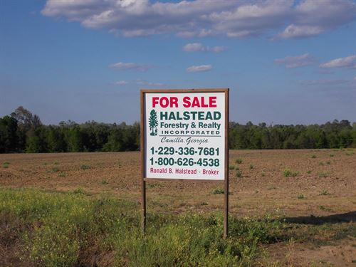 Attractive Farm With Fields & Woods : Sale City : Mitchell County : Georgia