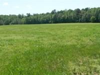 35.41 Acres Pasture, Woods, Creek : Lexington : Oglethorpe County : Georgia
