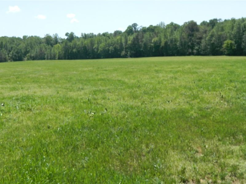35.41 Acres Pasture, Woods, Creek : Lexington : Oglethorpe County : Georgia