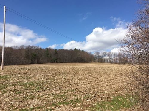 79 Acres Farmland In Franklin Ny : Franklin : Delaware County : New York