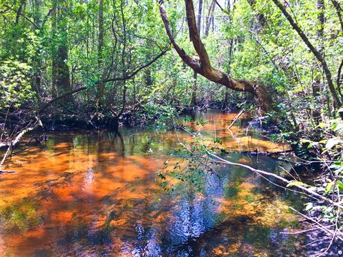 Reduced Great Creek And Hunting : Altha : Calhoun County : Florida