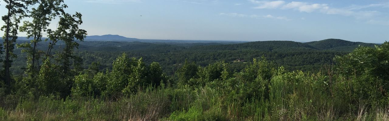 110.00 Acres Great Hunting Or Recr