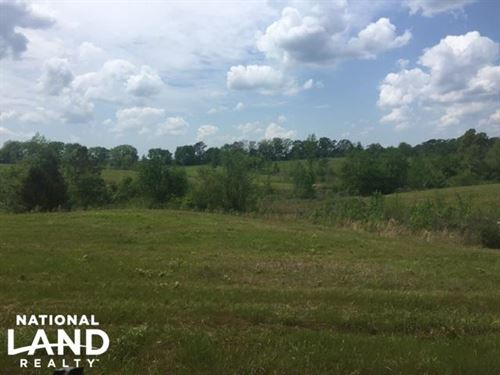 Russellville Pasture Opportunity : Russellville : Franklin County : Alabama