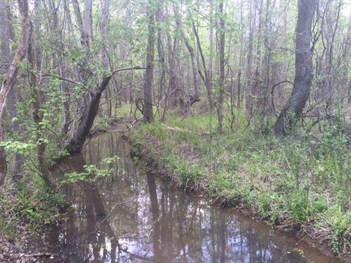 Beautiful Hunting Tract : Milledgeville : Baldwin County : Georgia