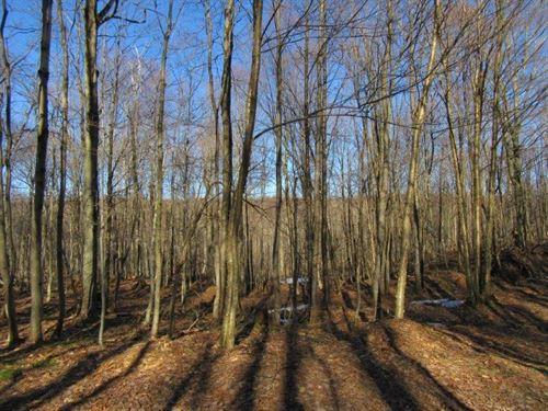 100 Acres Osceola Ny Near Forest : Osceola : Lewis County : New York
