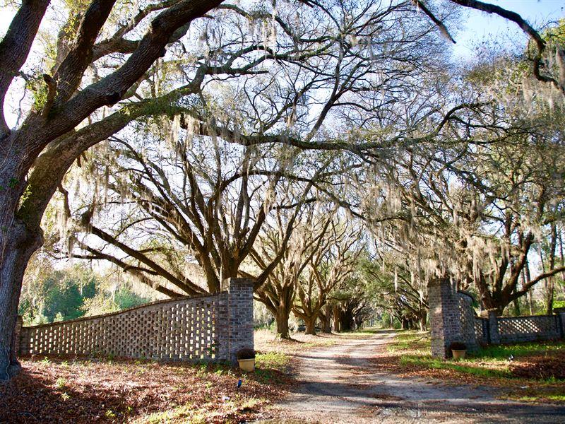 Swan Hill Plantation : Garnett : Jasper County : South Carolina
