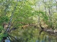 Mare Branch Tract : Milton : Santa Rosa County : Florida
