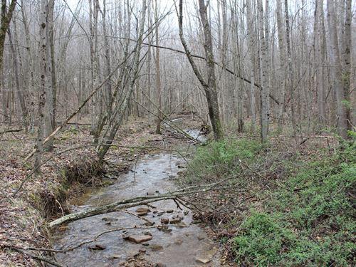 Camp Creek Rd - 24 Acres : Piketon : Pike County : Ohio