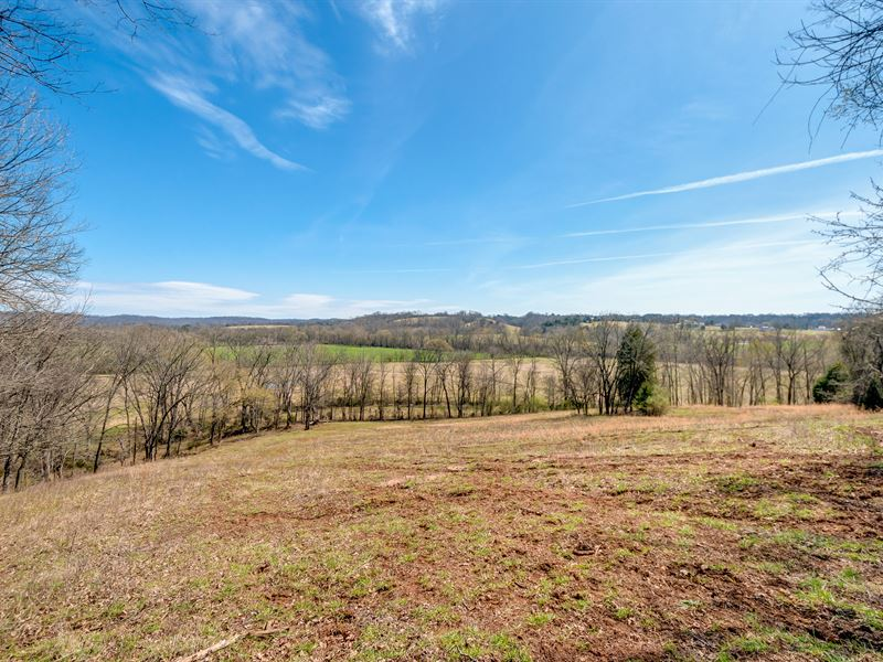 74 Acres On Duck River : Centerville : Hickman County : Tennessee