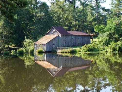 Jordan Mill Pond : Sandersville : Washington County : Georgia
