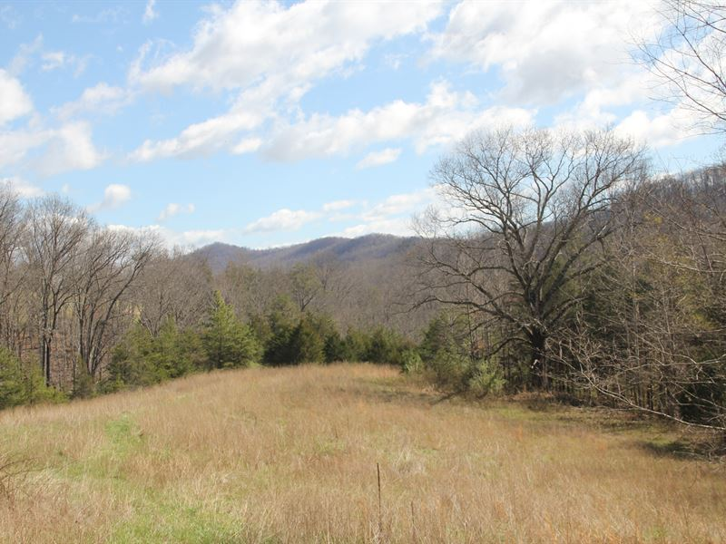 Woods, Fields, Streams, Views : Shipman : Nelson County : Virginia
