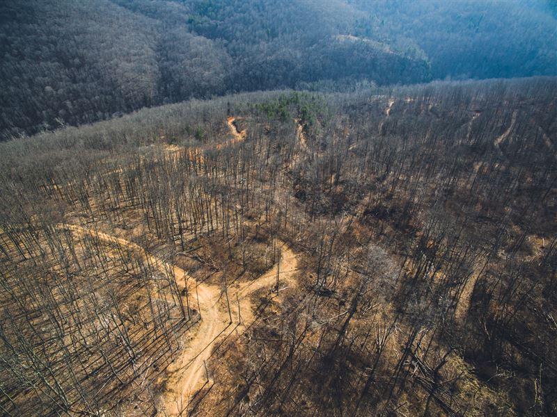 Wolfcreek Rd : Narrows : Giles County : Virginia