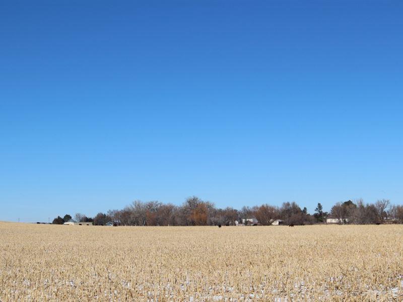 Bayard Wildhorse Creek 68 : Bayard : Morrill County : Nebraska