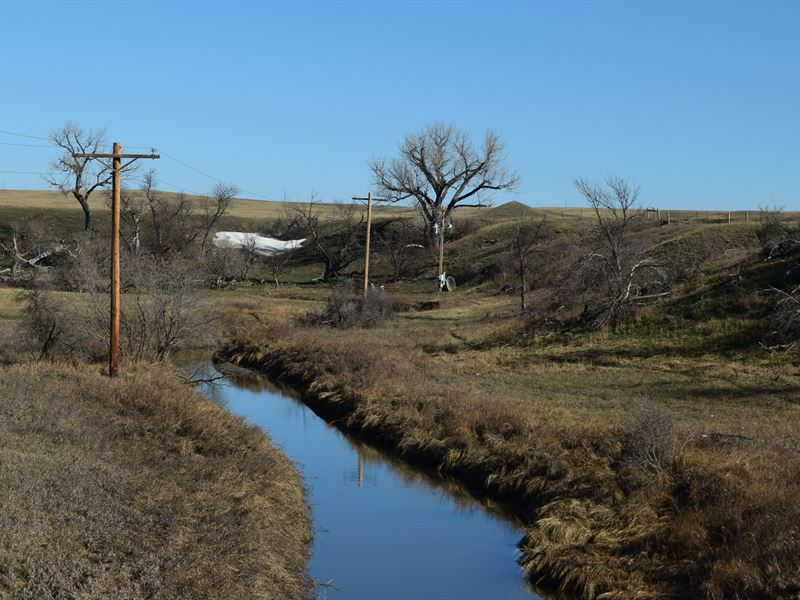 Irrigated River Front : Newell : Butte County : South Dakota
