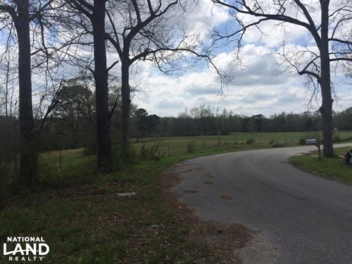 County Road 864 Acreage Opportunity : Clanton : Chilton County : Alabama