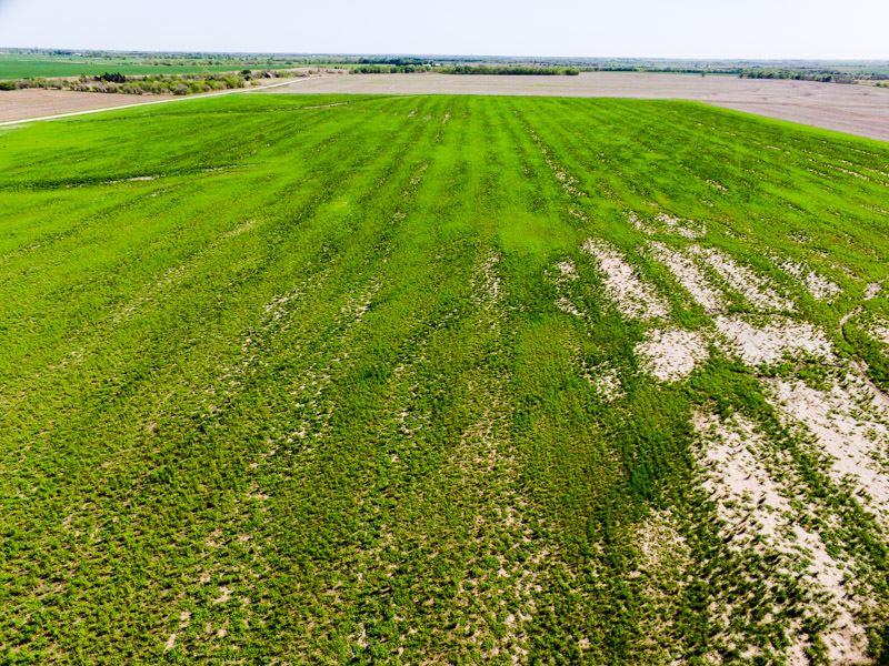 5/22 Auction Hunting Land W/ Creek : Nardin : Oklahoma County : Oklahoma