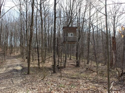 Wills Hill Rd - 78 Acres : Pomeroy : Meigs County : Ohio