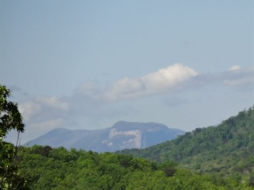 29.90 Acres Mountain Top Acreage : Travelers Rest : Greenville County : South Carolina